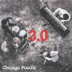 Chicago Poodle